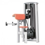 GYM80 SYGNUM Bizeps Curl Machine